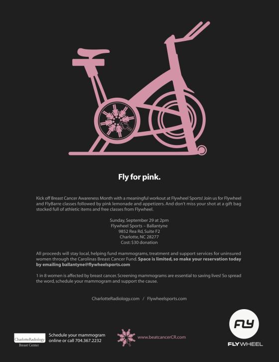FlyWheel for Pink