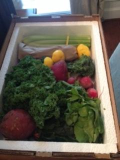 Simply Fresh Box 2