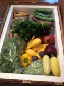 Simply Fresh Box 1