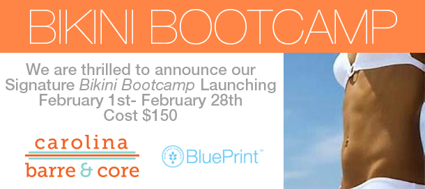 Carolina Barre Bikini Bootcamp