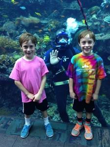 GA Aquarium Divers