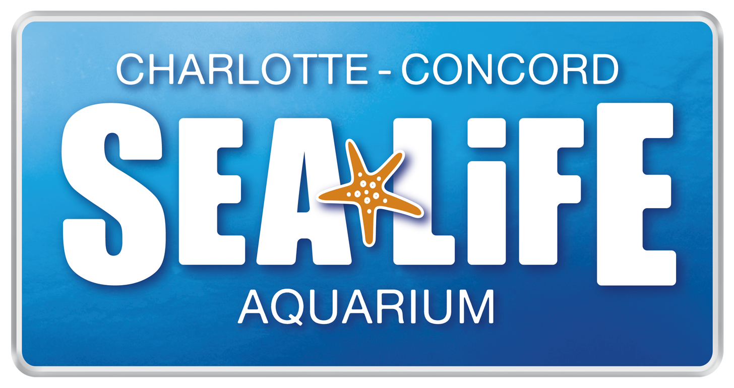 Smarty Steal Toddler Tuesdays At Sea Life Charlotte