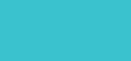 ivivva charlotte logo