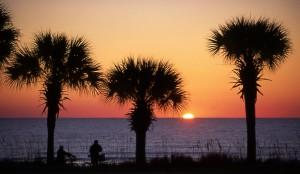 Palmetto Dunes Sunset