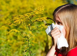 CEENTA Bad Ragweed Allergy