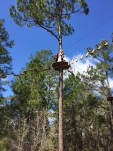 Go Ape Smarty Myrtle 1