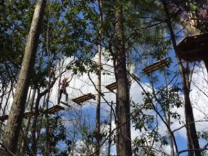 Go Ape Smarty Myrtle 3