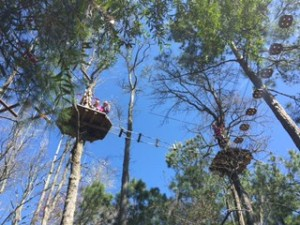 Go Ape Smarty Myrtle 4