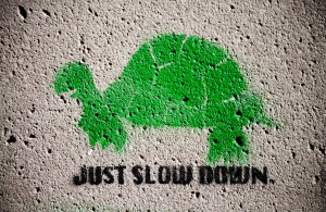 Turtle-Sign-Reading-Just-Slow-Down