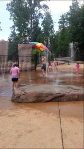 Dan Nicholas Park Splash
