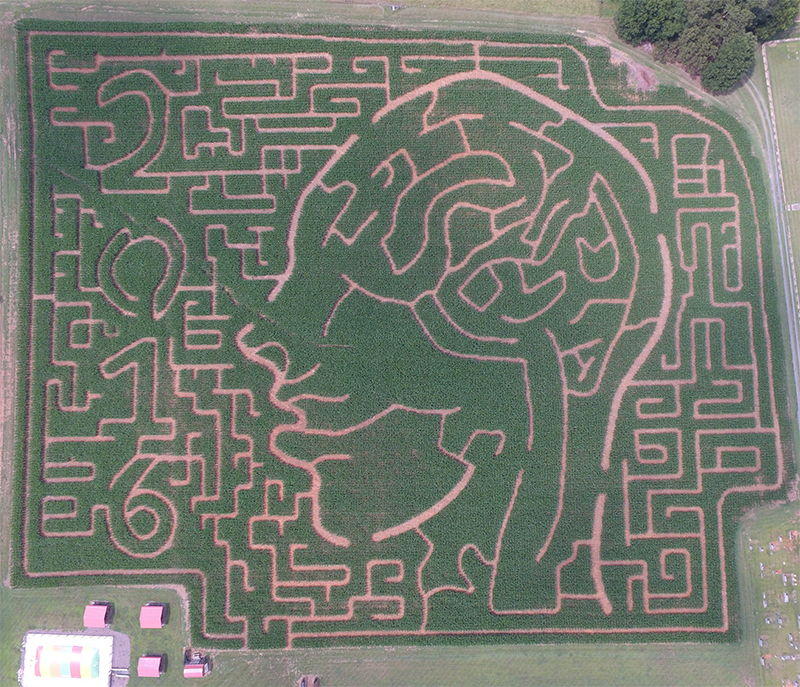 getlostcorn-aerialview-2016