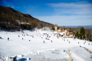 Beech Winter (3 of 18)
