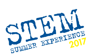 StemLogo-Yellow2017