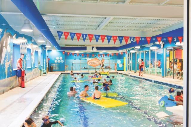 Goldfish School_FamilySwim