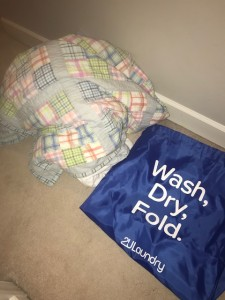 2U Laundry 2